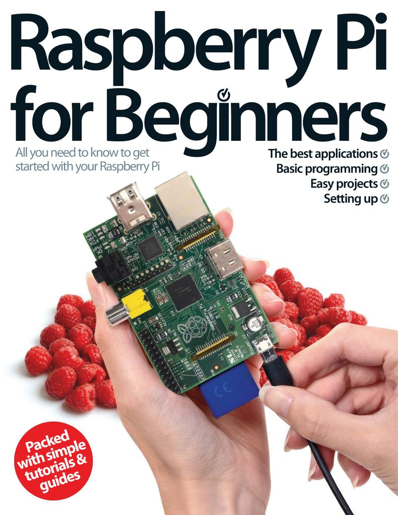 Buy Raspberry Pi For Beginners 6th Edition - Raspberry Pi