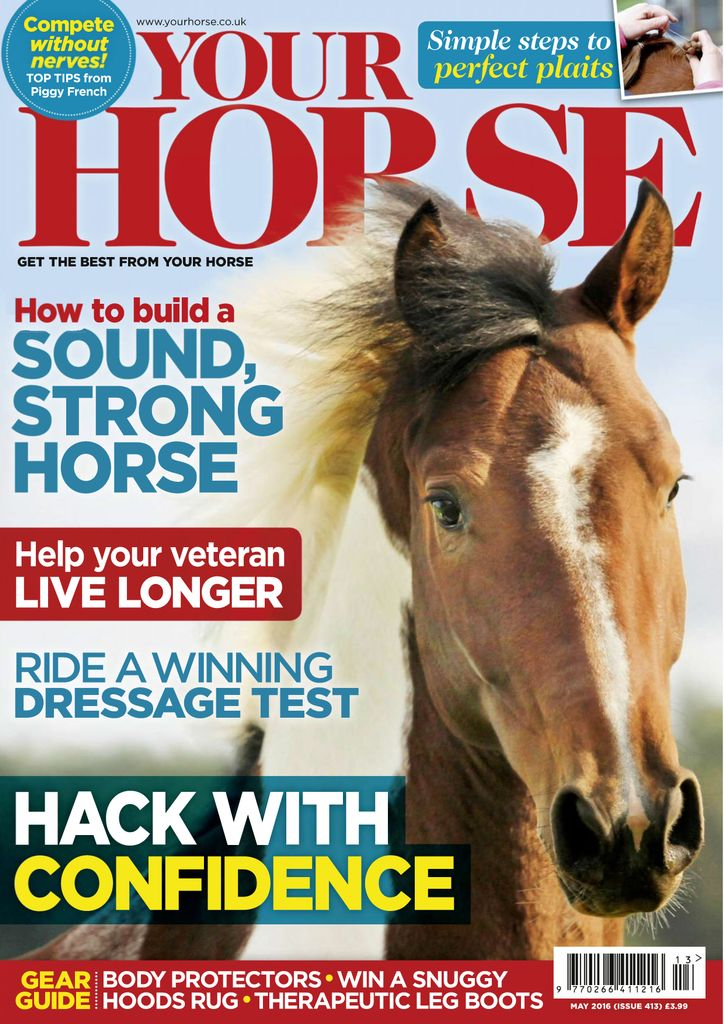 Buy Issue 413 - Your Horse