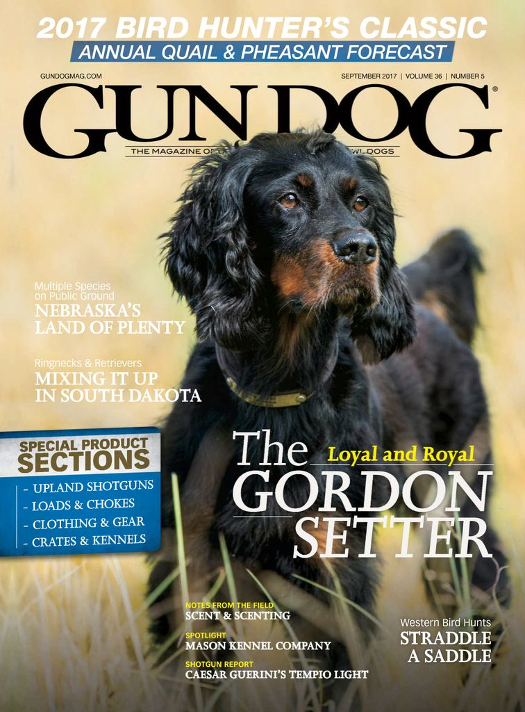 Buy September 2017 - Gun Dog