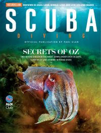 January 01, 2020 issue of Scuba Diving