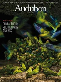 May 31, 2018 issue of Audubon Magazine