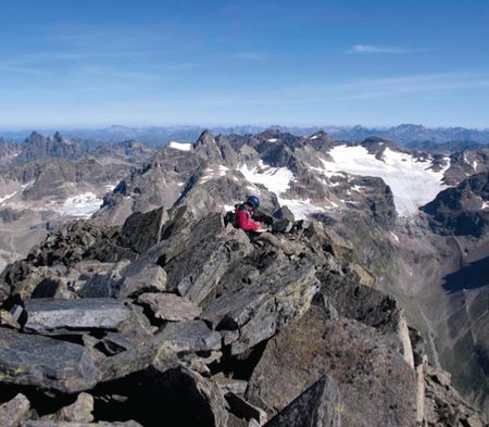 Mountaintops get less lonely for alpine plants