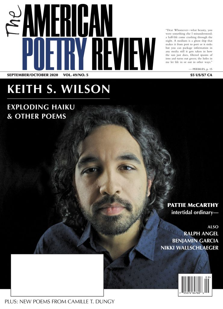 The American Poetry Review