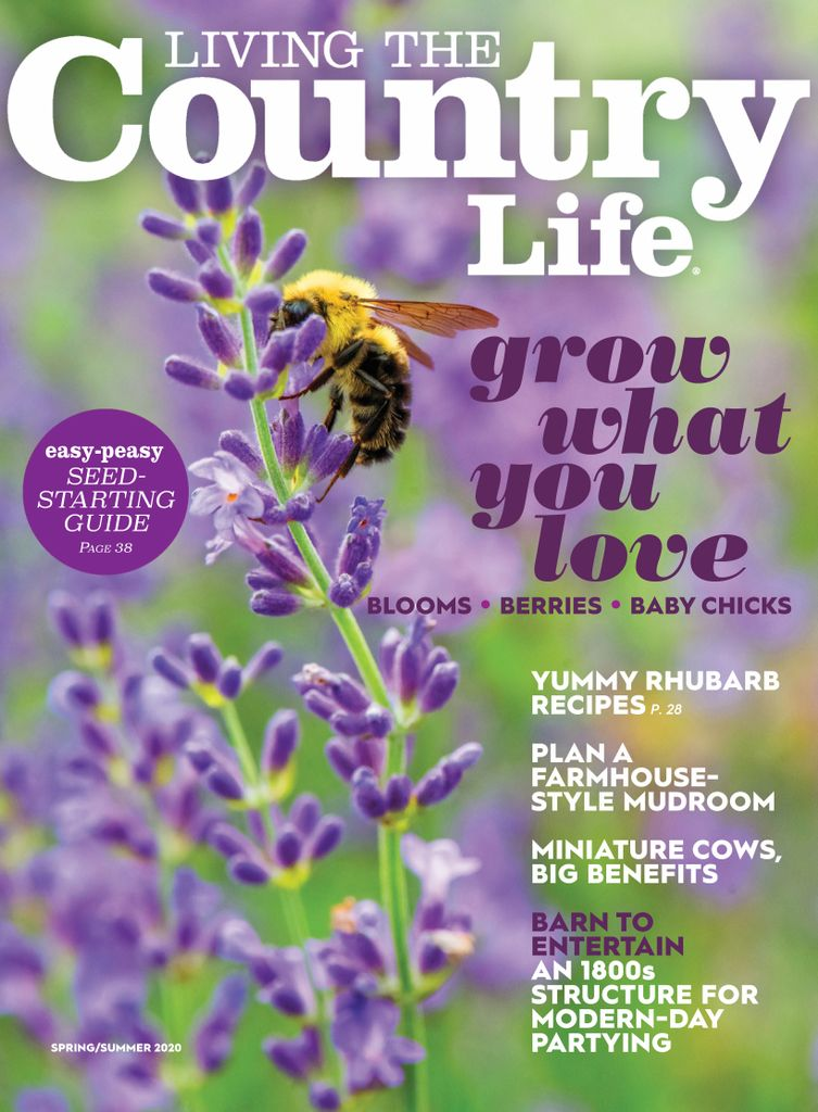 Living The Country Life - Subscription Subscriptions