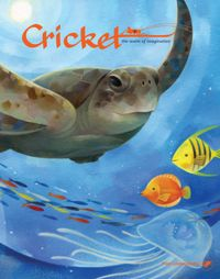 July 01, 2017 issue of Cricket