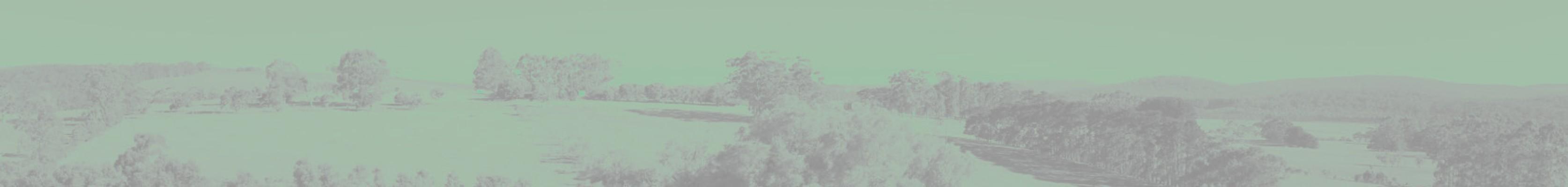 f0006-01