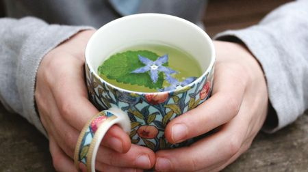 A healing herb gardenfor body, mind, and spirit