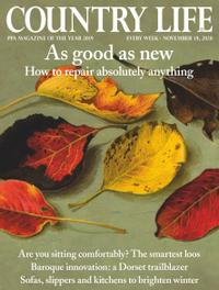 November 18, 2020 issue of Country Life