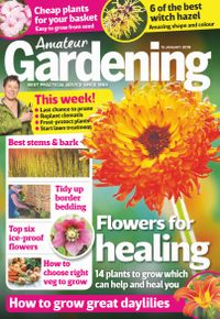 January 18, 2019 issue of Amateur Gardening