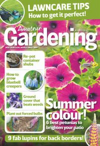 March 29, 2019 issue of Amateur Gardening