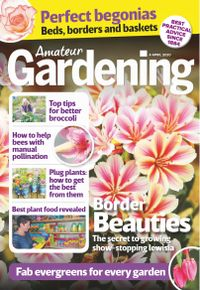 April 04, 2020 issue of Amateur Gardening