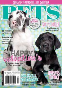 February 01, 2016 issue of Pets