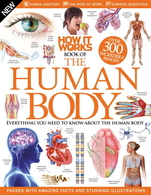How It Works: Book of The Human Body