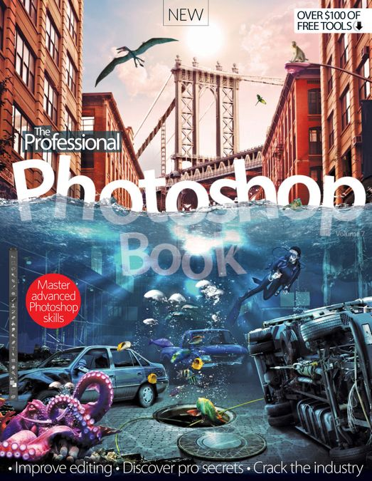 The Professional Photoshop Book