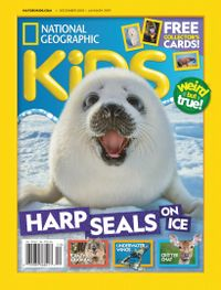November 30, 2018 issue of National Geographic Kids