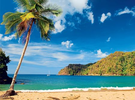Find tranquility in Trinidad & Tobago
