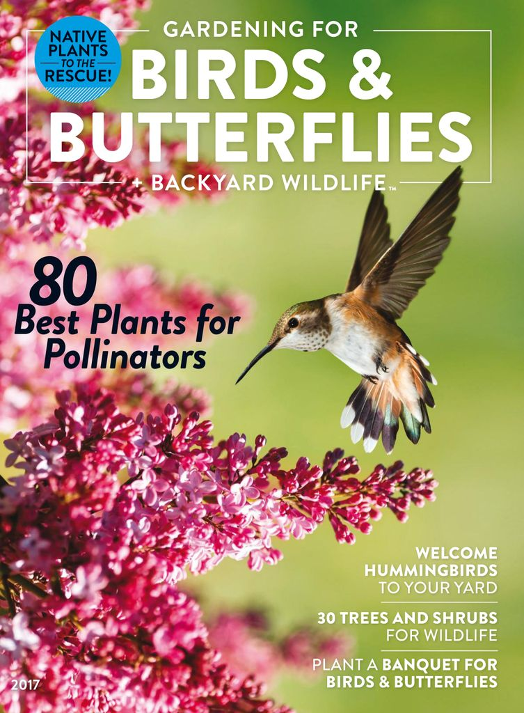 Gardening for Birds and Butterflies + Backyard Wildlife - Issue Subscriptions