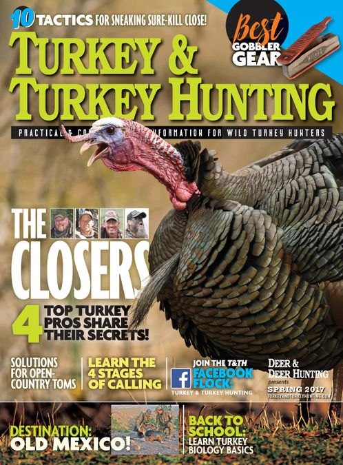 Turkey & Turkey Hunting