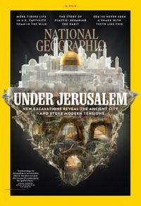 November 30, 2019 issue of National Geographic