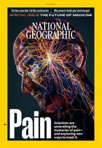 December 31, 2019 issue of National Geographic
