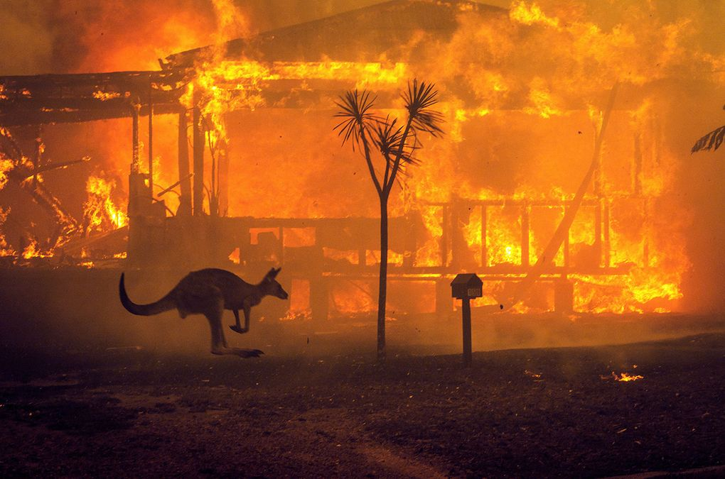 Denying climate science while my nation burns