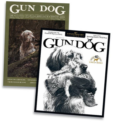 gundogus210901_article_008_01_01