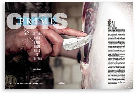 pethunus1803_article_011_01_01