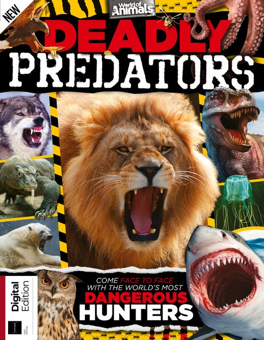 World of Animals: Deadly Predators