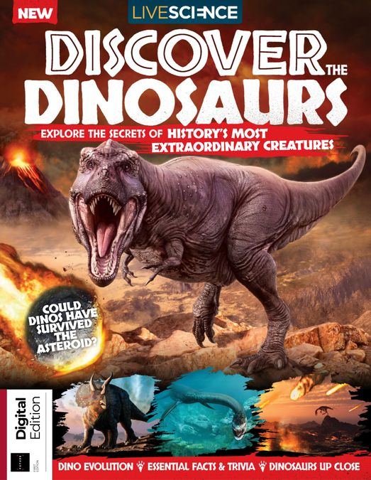 Discover the Dinosaurs