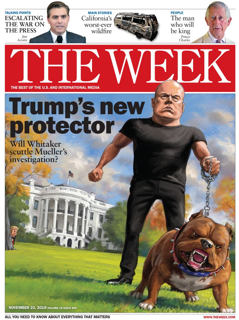 The Week Magazine cover for November 23, 2018.