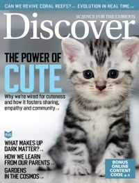 November 30, 2019 issue of Discover