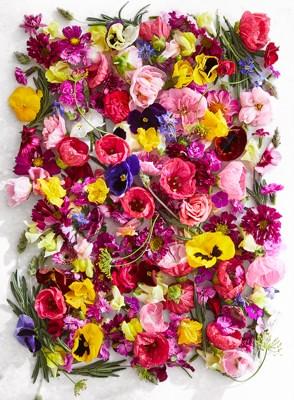 ALR0520-p25-floral