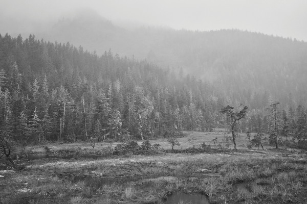 tongass_out_053
