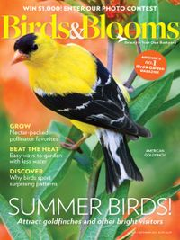 July 31, 2019 issue of Birds & Blooms
