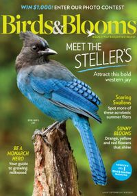 August 01, 2020 issue of Birds & Blooms