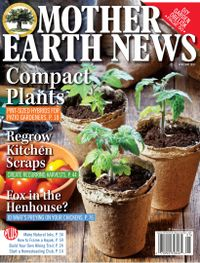 April 01, 2020 issue of MOTHER EARTH NEWS