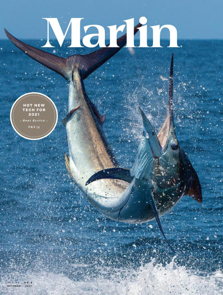 Marlin - Subscription