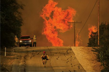 Southern California Wildfires Spare Winemakers